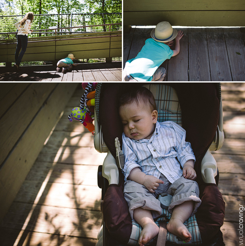 Toronto lifestyle photographer - Family portraits at the Toronto Zoo