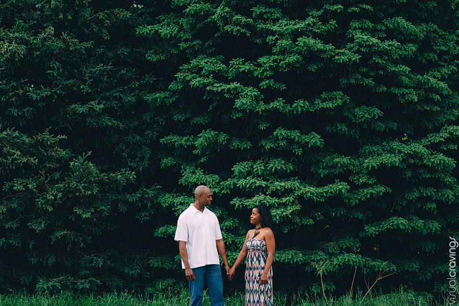 Kortright-engagement-photos-Toronto-wedding-photographer-visual-cravings_01