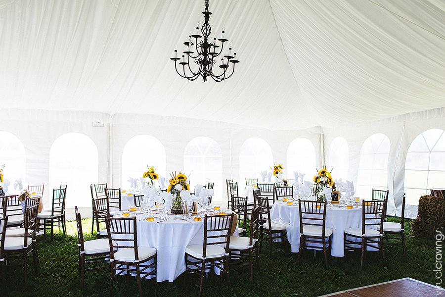 Collingwood-wedding-photographer-visual-cravings-EllenPaul_103